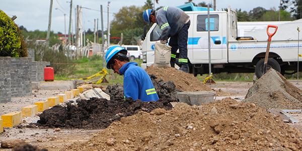 En Agromaq hemos logrado ser auto sustentables en el consumo de energía eléctrica